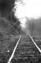 Tracks of The Ozarks